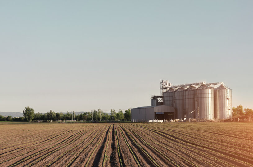 Freshly sown corn in ground and silos in background at sunset